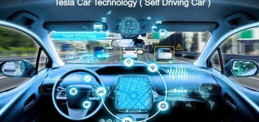 Self Driving Car Tesla